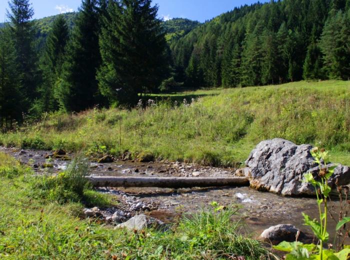 Čistenie Čutkovskej doliny